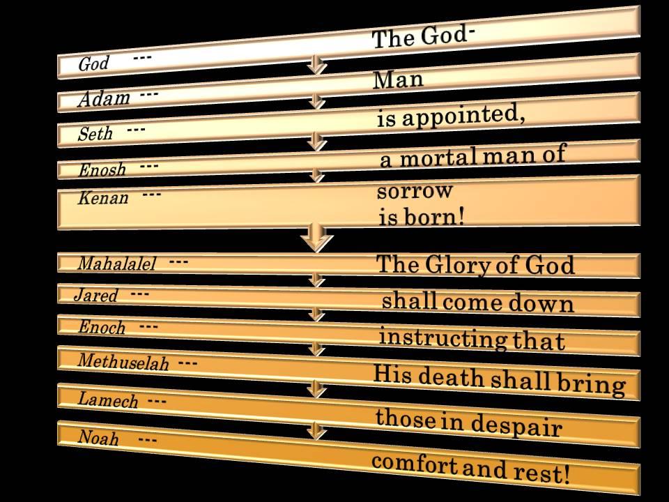 God,Adam,Seth,Enosh,Kenan,Mahalalel,Jared,Enoch,Methuselah,Lamech,Noah.